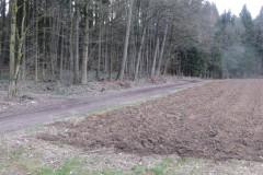 1.-Bild-Weg-zum-Parcours