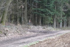 2.-Bild-Weg-zum-Parcours