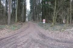 3.-Bild-Weg-zum-Parcours